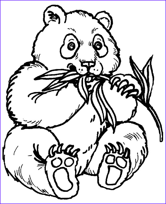 Zoo Animals Coloring Pages Unique Photos Zoo Animals Coloring Pages Best Coloring Pages for Kids