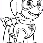 Zuma Paw Patrol Coloring Page Cool Photos Paw Patrol Coloring Pages