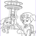 Zuma Paw Patrol Coloring Page Elegant Stock Zuma And Skye Paw Patrol Coloring Pages