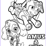 Zuma Paw Patrol Coloring Page New Image Zuma And Skye Pups From Paw Patrol On Printable Coloring Books