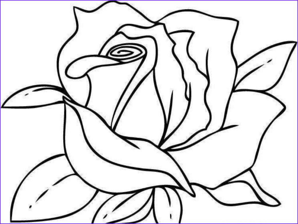 printable coloring pages roses colorine rose coloring pages for adults