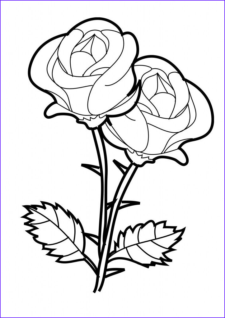 Adult Coloring Page Rose Beautiful Image Free Printable Roses Coloring Pages For Kids