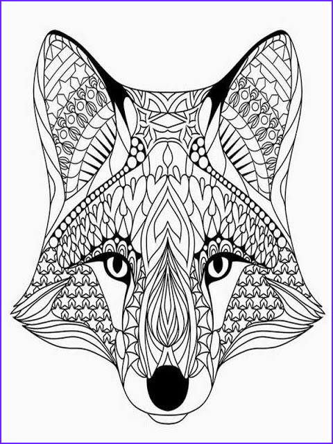 wolf head adult sketch templates
