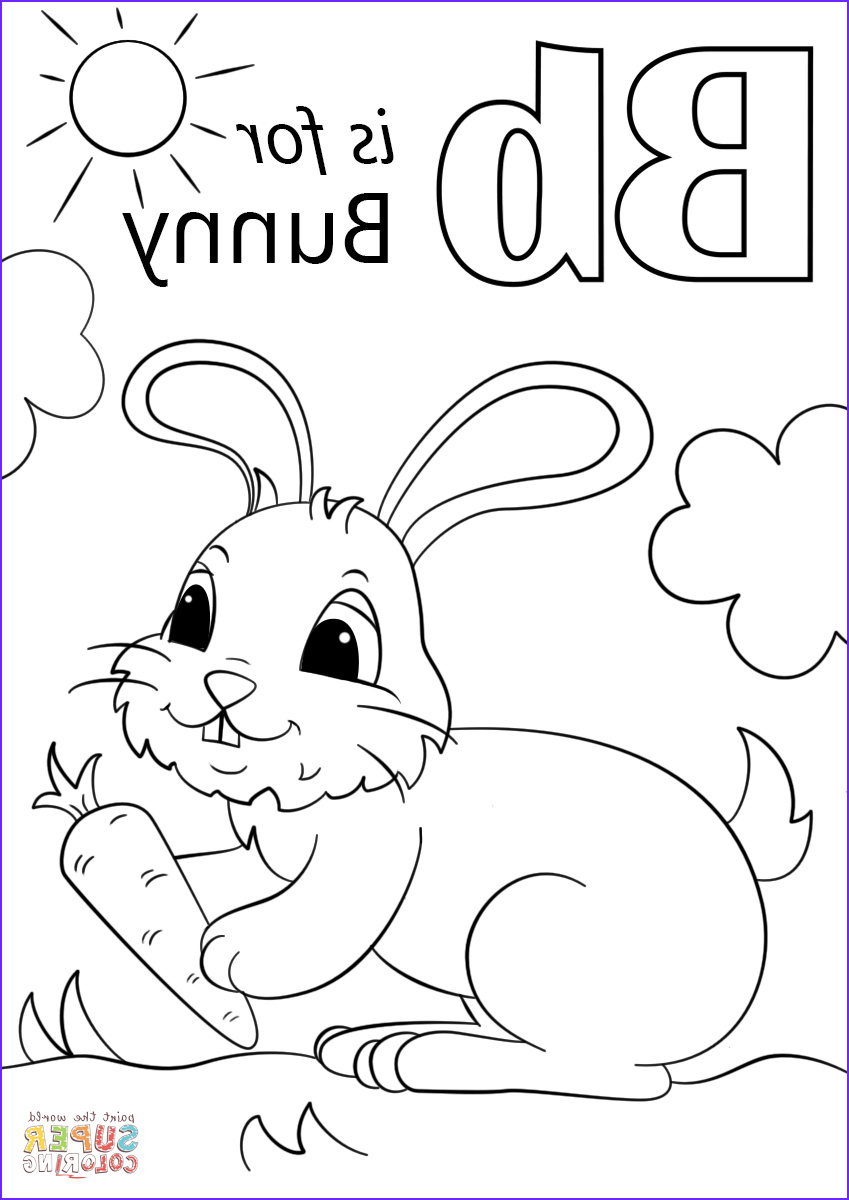 letter b is for bunny