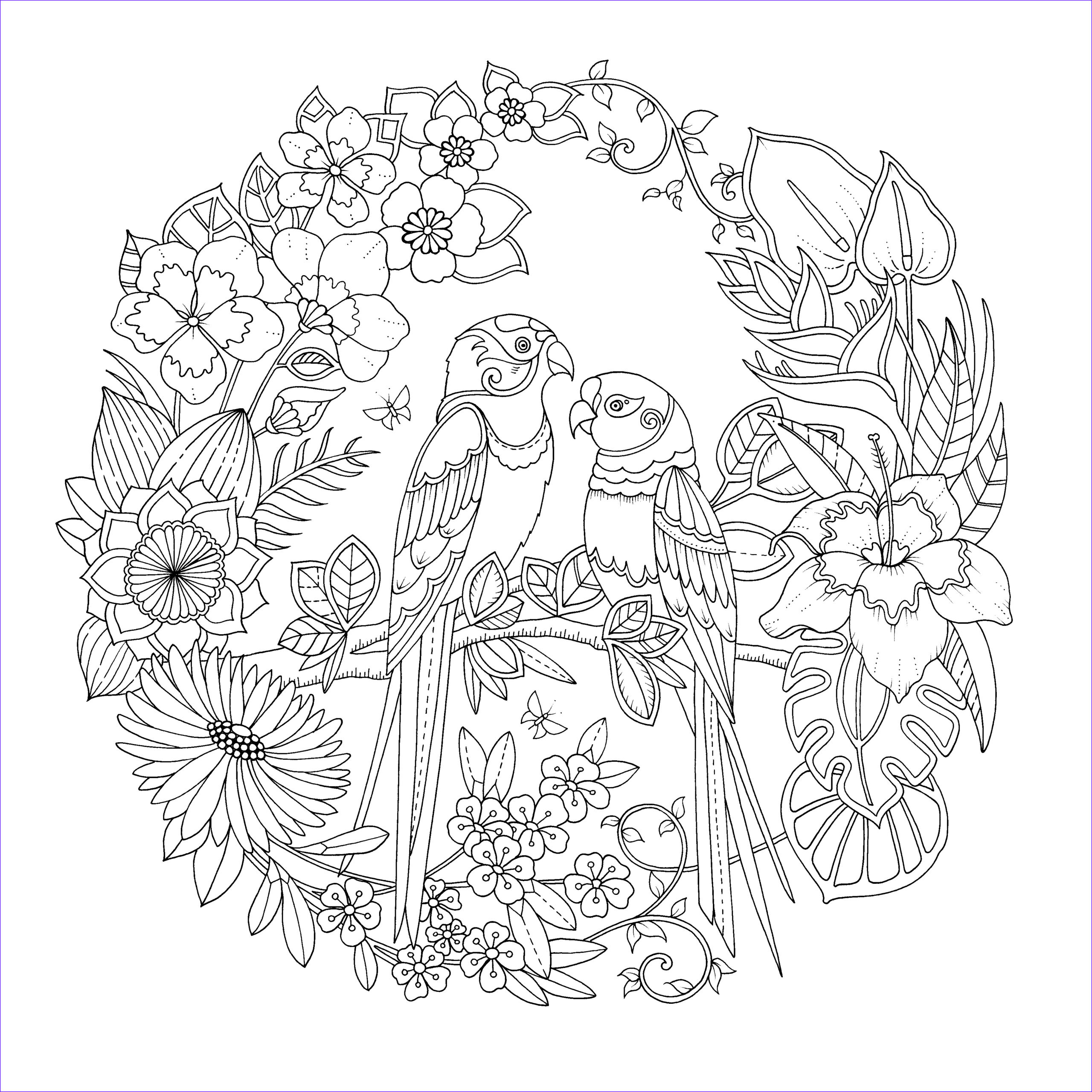 Basford Coloring Book Beautiful Collection Magical Jungle Colouring Book By Johanna Basford