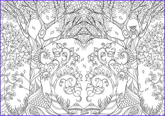 Basford Coloring Book Inspirational Images Whimsical Coloring Books For Grown Ups Are A Hit