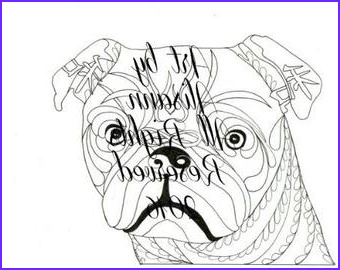 basset hound coloring page instant
