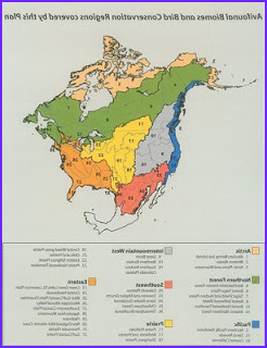 Biome Map Coloring Beautiful Photos Weltanschuuang Ecoregions