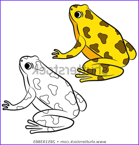 cartoon poisondart frog coloring page vector