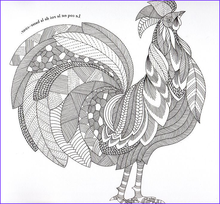 Chicken Coloring Page for Adults Elegant Gallery Rooster Coloringpages Adult Coloring Chicken Chicken