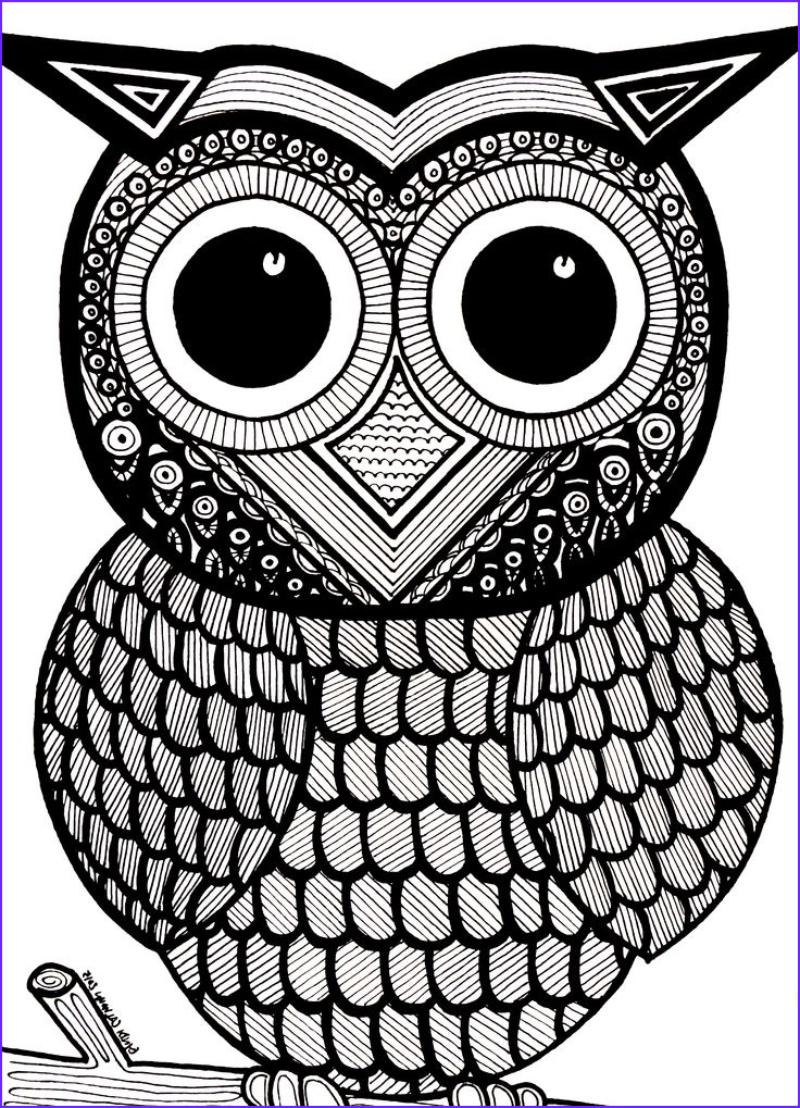 Coloring Book Page for Adults to Print Beautiful Images 589 Best Images About Coloring Owls On Pinterest