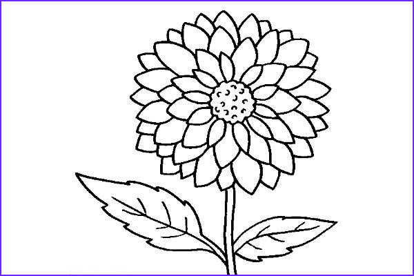 cool coloring page
