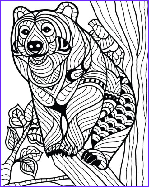Coloring Page Animals for Adults Awesome Collection 147 Best Color Sheets for Kids Images On Pinterest