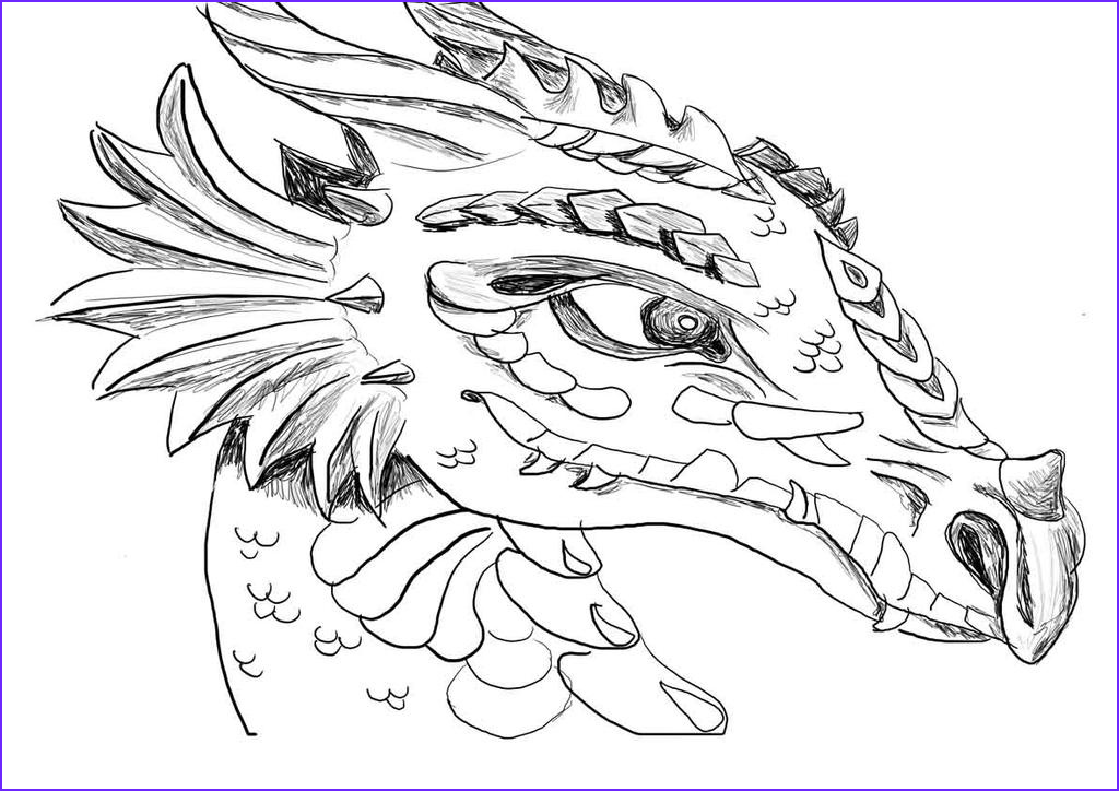Coloring Page Dragons Best Of Photos How to Train Your Dragon Coloring Pages All Dragon by Rain