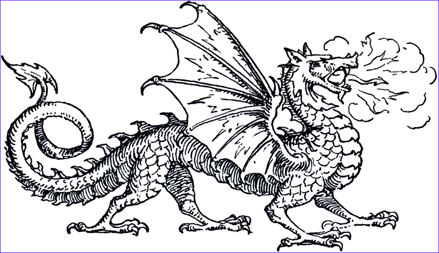 Coloring Page Dragons New Photos Ce Upon A Child S Heart