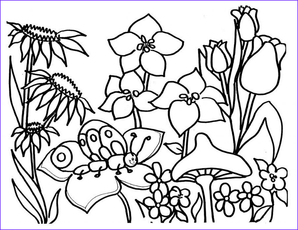Coloring Page Of A Flower Beautiful Gallery Free Printable Flower Coloring Pages for Kids Best
