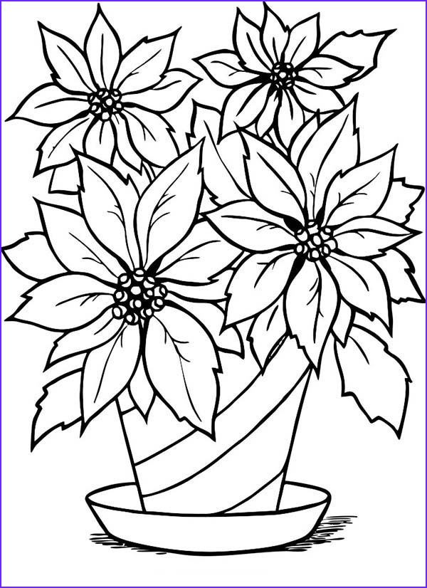 Coloring Page Of A Flower Best Of Gallery Flower Pot Outline Cliparts