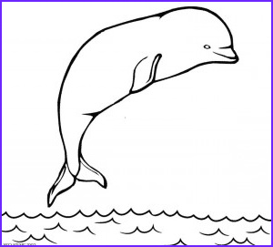 Coloring Page Whales Elegant Stock Printable Whale Coloring Pages For Kids
