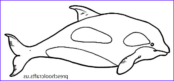 Coloring Page Whales Inspirational Photos Whale Coloring Pages For Preschool Preschool And