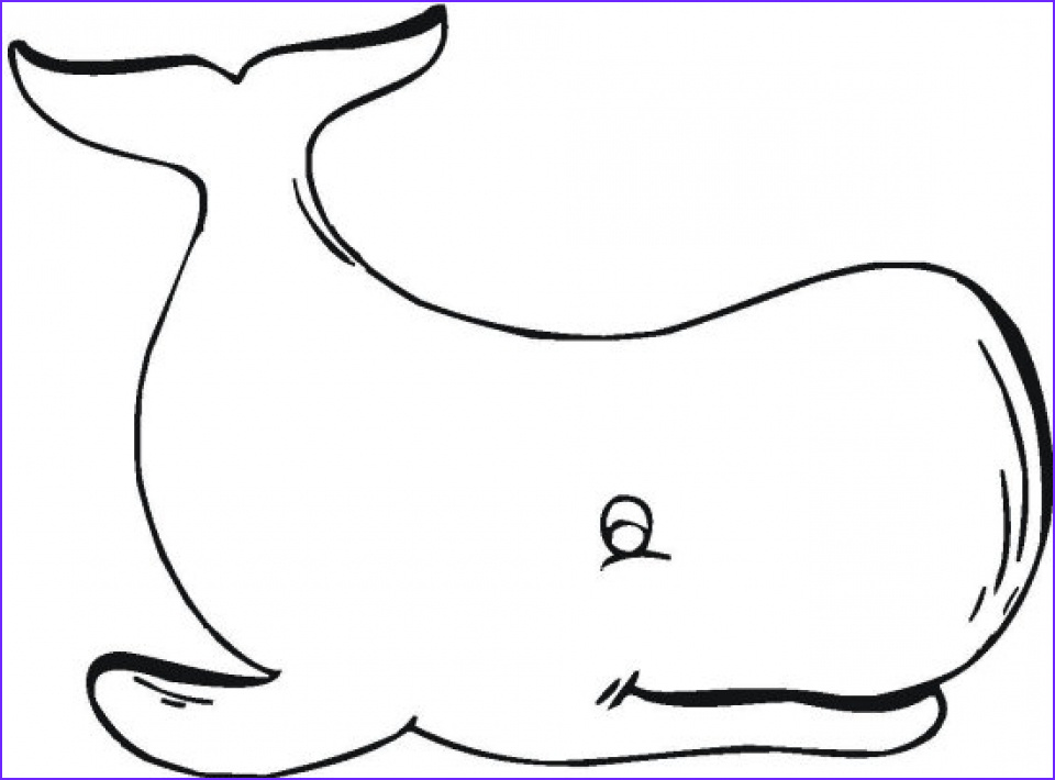 Coloring Page Whales Unique Stock Get This Free Whale Coloring Pages 4488