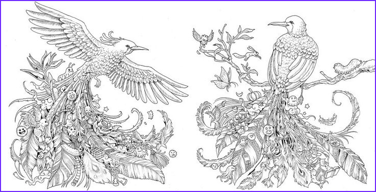 Crayons for Adult Coloring Book Luxury Gallery This Adult Coloring Book Will Have You Screaming where are