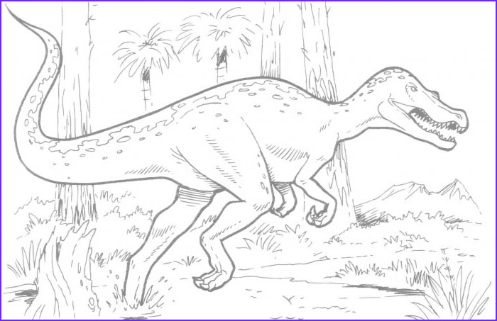 Dinosaur Coloring Page T Rex New Gallery T Rex Dinosaur Coloring Pages