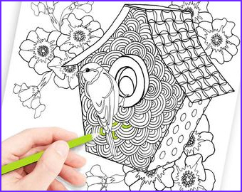 Does Coloring Relieve Stress Inspirational Photos Stress Relief Color