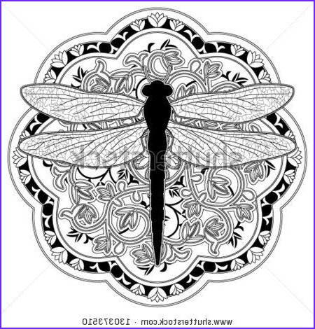 Dragonfly Mandala Coloring Page Inspirational Photography Dragonfly Medalion Stock Vector