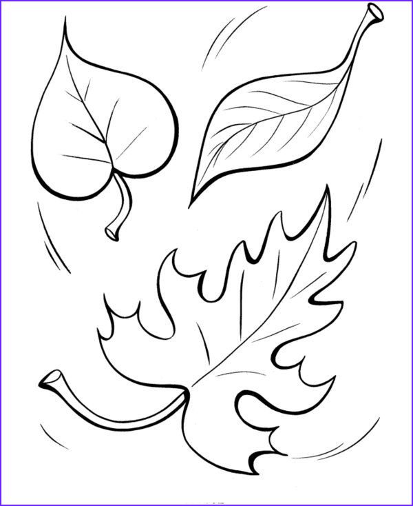 Fall Leaves Coloring Page Printable Unique Images Fall Coloring Pages Printable