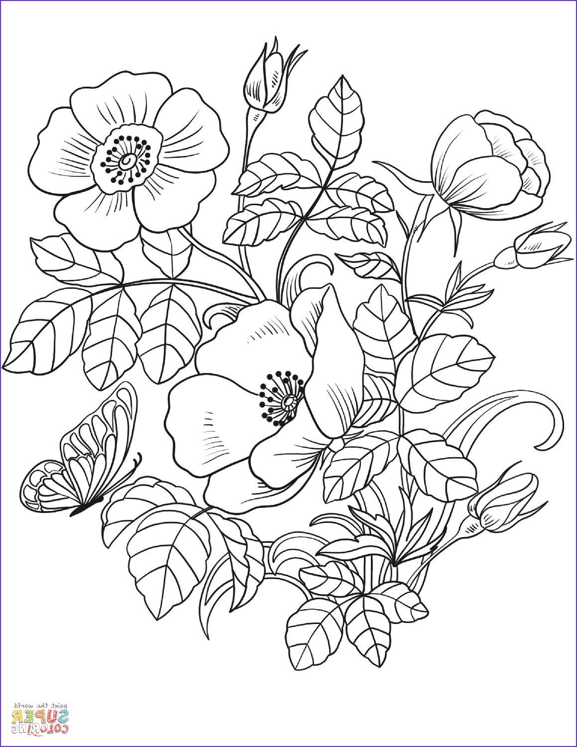 Flower Coloring Sheet Inspirational Image Spring Flowers Coloring Page