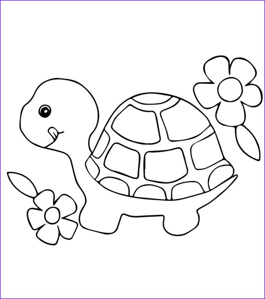 turtle coloring pages