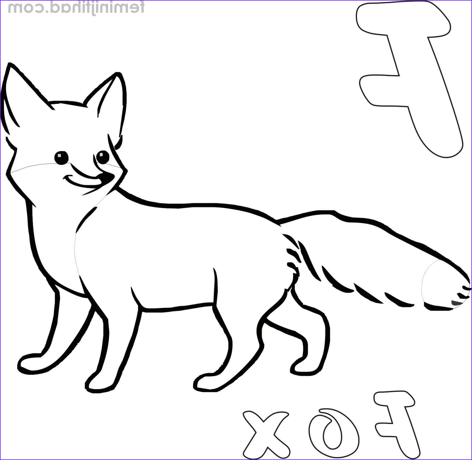 realistic fox coloring pages