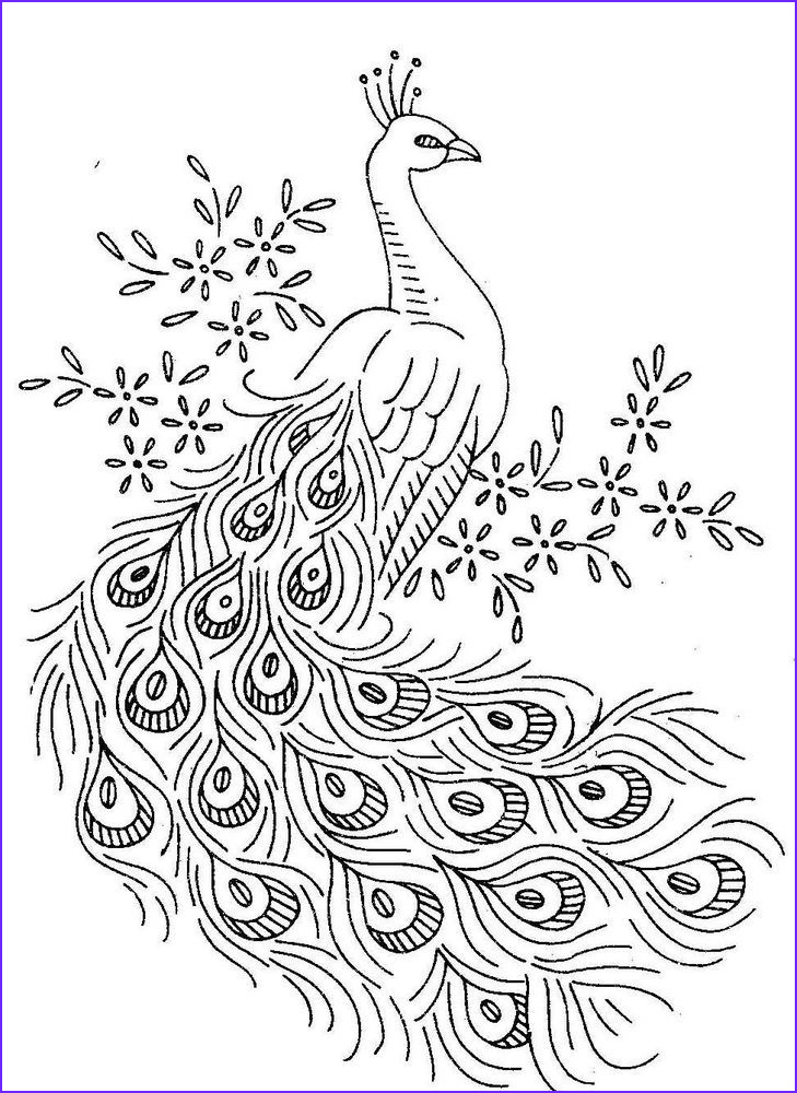 Free Peacock Coloring Page Elegant Image Peacock Coloring Pages