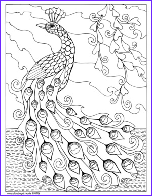 Free Peacock Coloring Page Unique Photography Free Peacock Coloring Page