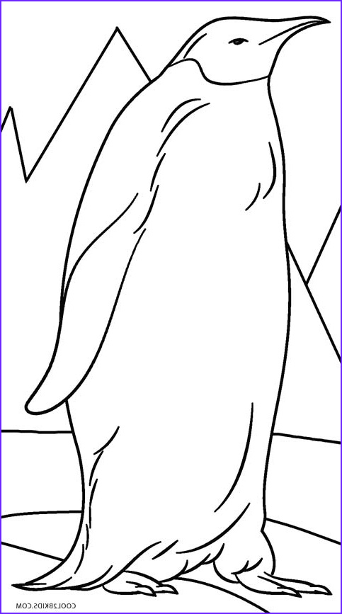 Free Printable Penguin Coloring Page Cool Photos Printable Penguin Coloring Pages for Kids