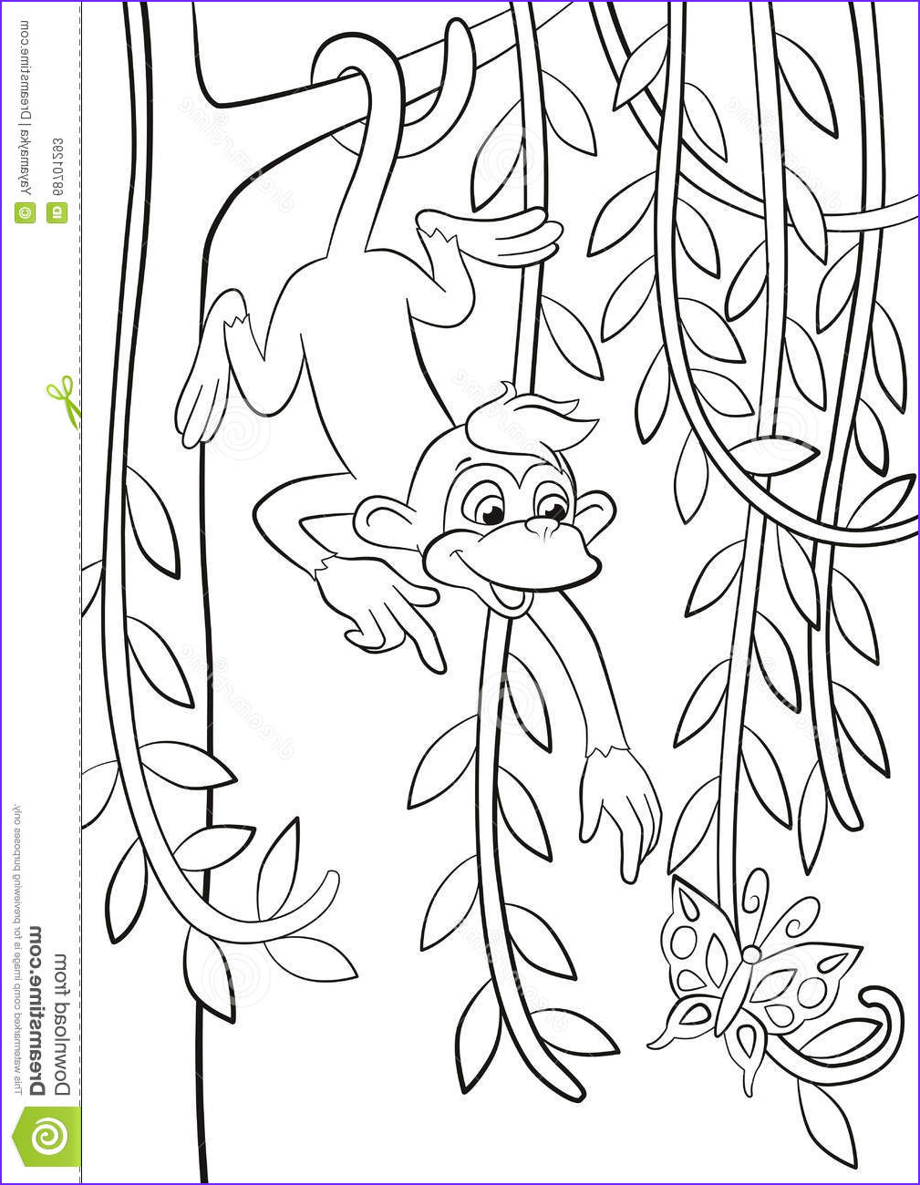 Girl Monkey Coloring Page Luxury Photography Awesome Coloring Pages Monkeys In Trees