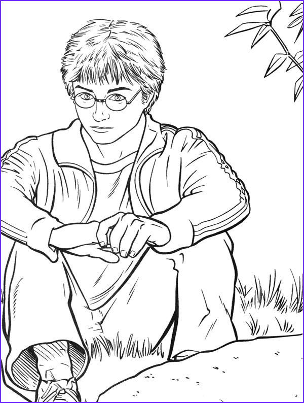 Harry Potter Coloring Book Page Best Of Image 377 Best Images About Colorir Harry Potter On Pinterest