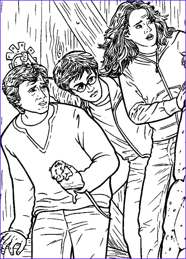 Harry Potter Coloring Book Page Luxury Photos 8 Harry Potter Coloring Pages Jpg Ai Illustrator Download