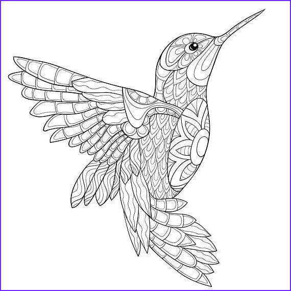Hummingbird Coloring Sheet Elegant Photos Adult Hummingbird Coloring Pages Printable Sketch Coloring