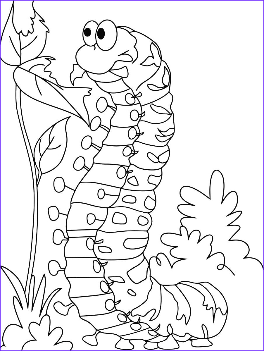 Larva Coloring Page Best Of Photography Dibujos De oruga Para Colorear Gratis