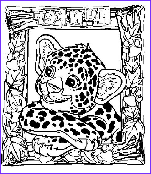 Lisa Frank Coloring Book for Adults Inspirational Photography 54 Best Lisa Frank Coloring Pages Images On Pinterest