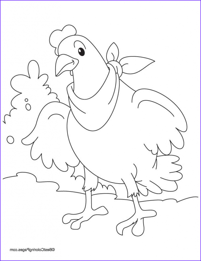 hen and chicks coloring pages