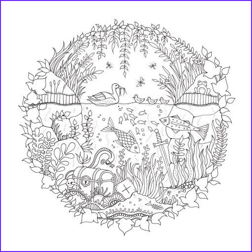 Magical Garden Coloring Book Inspirational Image Artist Johanna Basford Enchanted Forest Coloring Pages