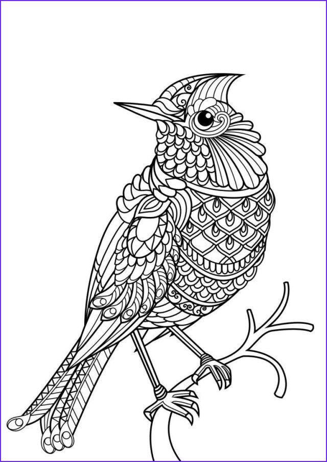 Mandala Coloring Animals Best Of Images 25 Inspiration Image Of Animal Mandala Coloring Pages