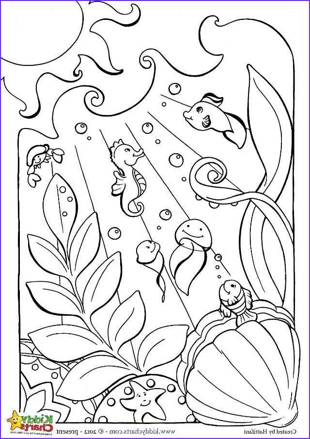 ocean coloring for kids adults