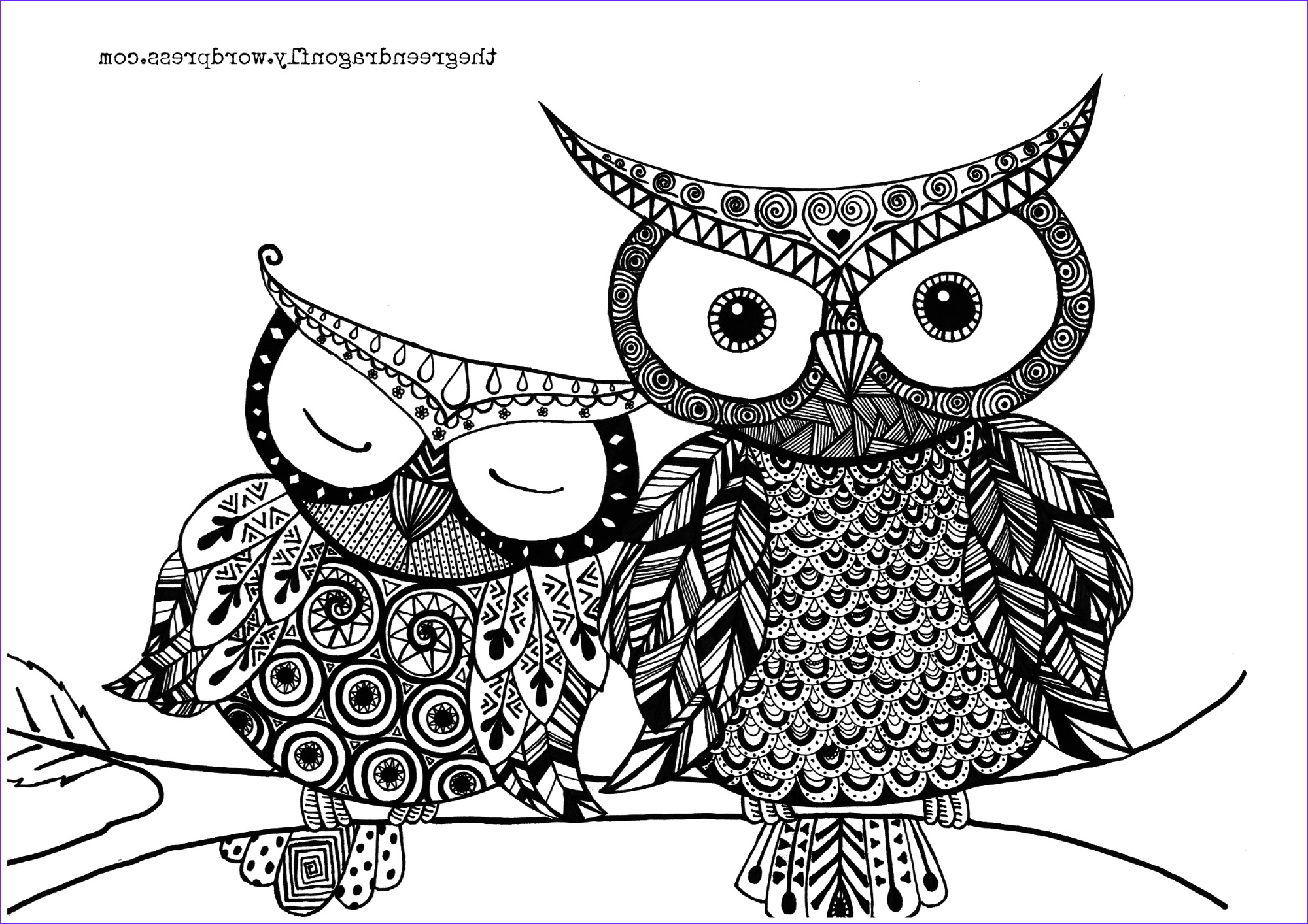 Owl Coloring Sheet Best Of Image Owl Coloring Page – the Green Dragonfly