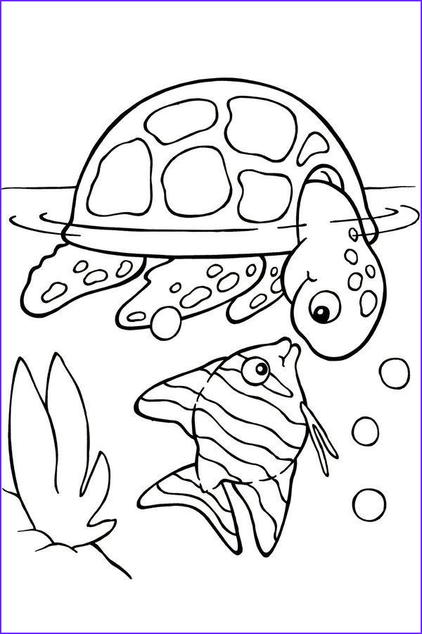Picture for Coloring Beautiful Photos Free Printable Turtle Coloring Pages for Kids Picture 4