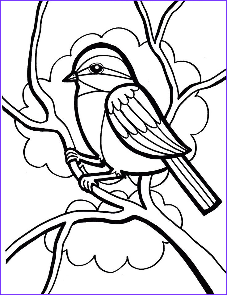Pigeon Coloring Page Elegant Stock Sparrow Bird Coloring Page