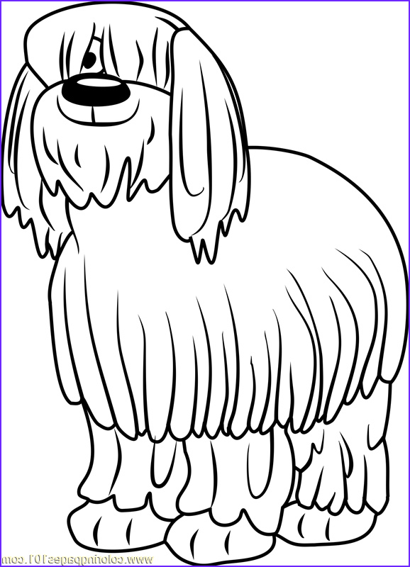 pound puppies niblet the old english sheepdog coloring page