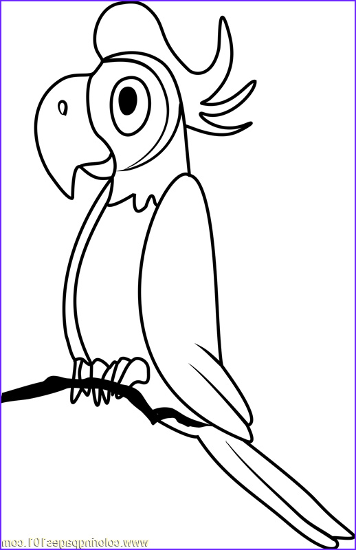pound puppies napoleon coloring page